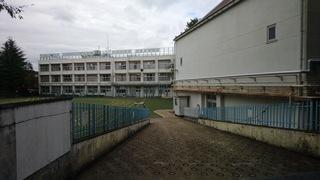 2019 1955.JPG